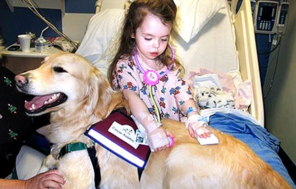 RESEARCH OF THE DAY: PET THERAPY | Child Life Resources